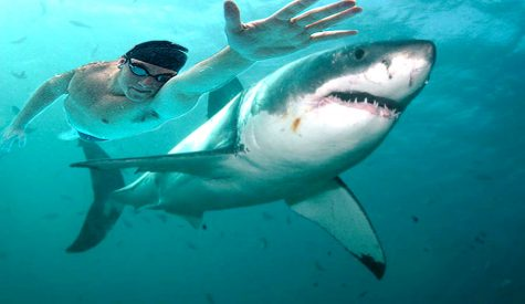"Michael Phelps races shark for Discovery's ""Shark Week""."